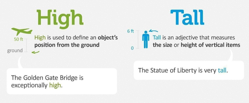 high tall отличия