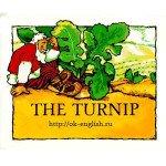 Сказки детям на английском: Репка – The Turnip