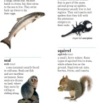 Мини-тексты на английском: Animals (R-S)