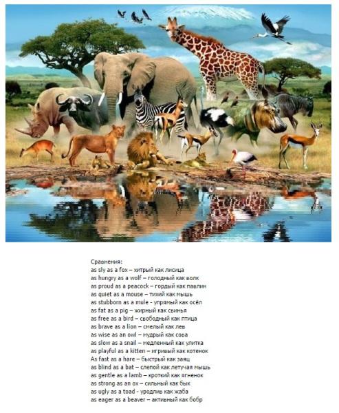 свойства и качество животных