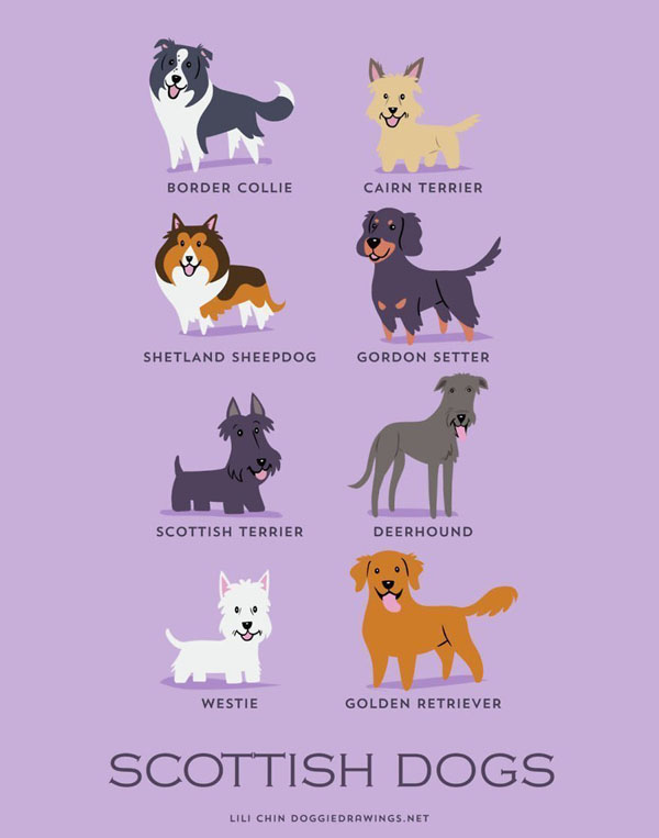 dogs7